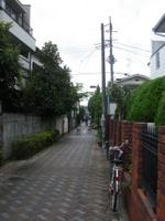 Imgp3390