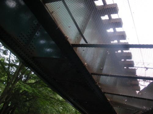 井の頭公園 井の頭線2