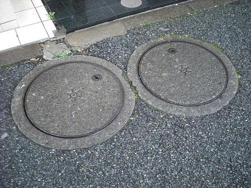 世田谷区三宿1-2-10 猫またぎさん採取