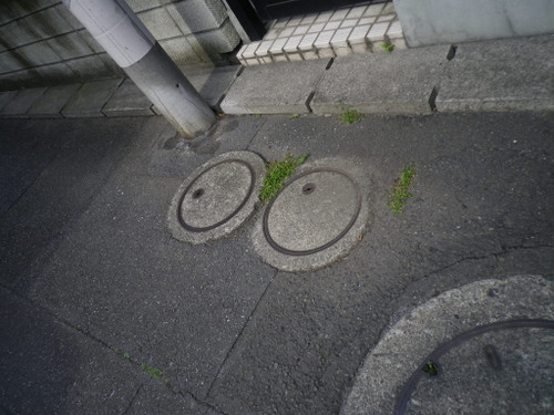 世田谷区赤堤5-24-14の真性おしくら